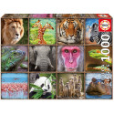 Puzzle Collage of wild animals Educa EDUCA-17656