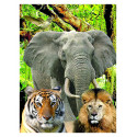 Puzzle 3d 3D Puzzle - 48 pieces - the animals Riviera Games RIV-P3D04