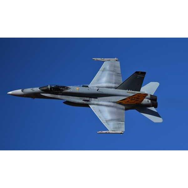 F / A-18 Hornet Switzerland / Australia