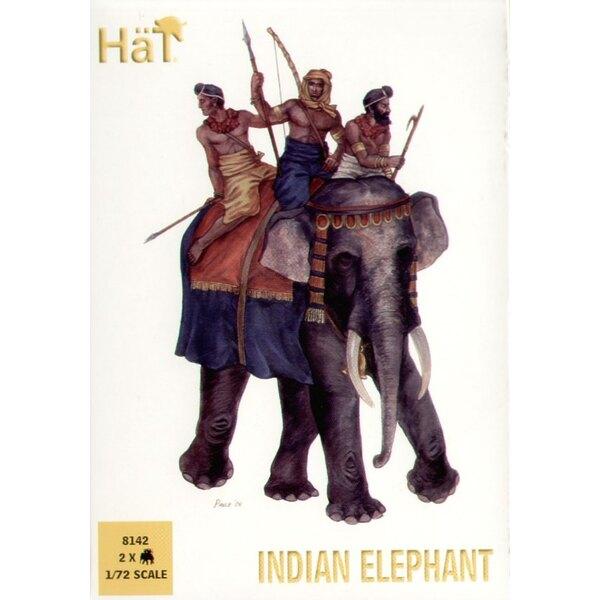 Indian Elephant x 2 elephants per box