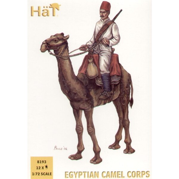 Egyptian Camel Corps