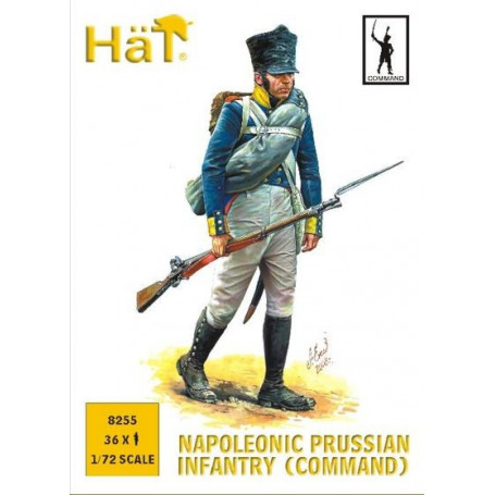 Prussian Infantry Command (Napoleonic Period)