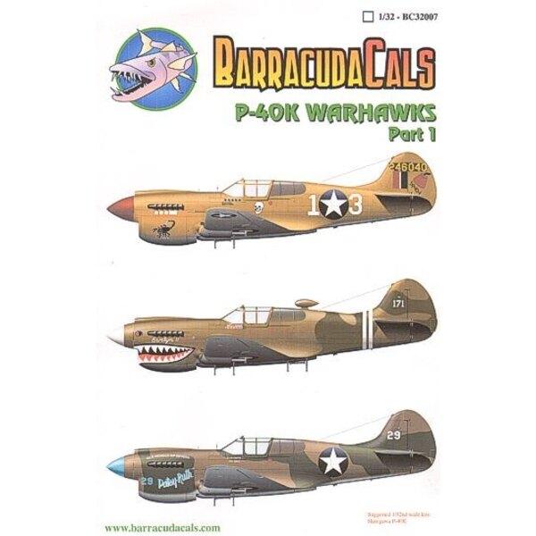Curtiss P-40K Warhawks Pt 1 (3) 246040 White 13 64thFS 57thFG Lt R.Johnson Jay′ Tunisia 1943 White 171 75th FS/23rd FG New Guine
