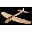 Joyful Annerfly Small Glider ANNER AN-E37A0