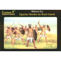 egyptian sherden warriors and the royal guard