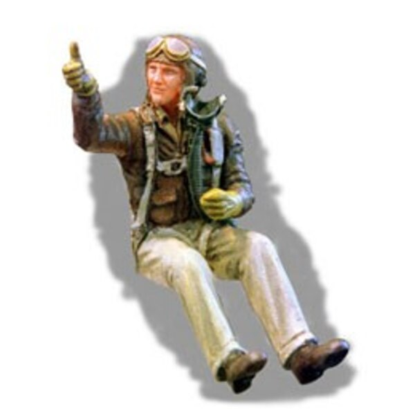 WWII USAF Europe fighter Pilot seated in aircraft