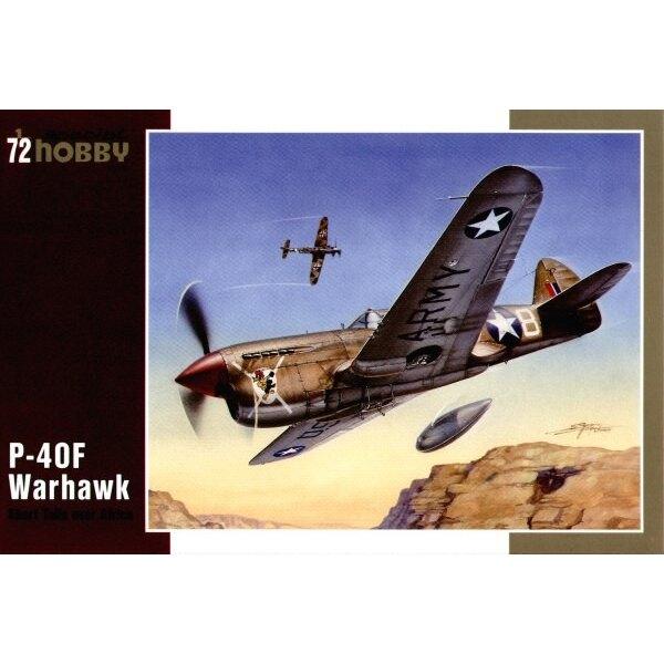 Curtiss P-40F Warhawk with Merlin engine