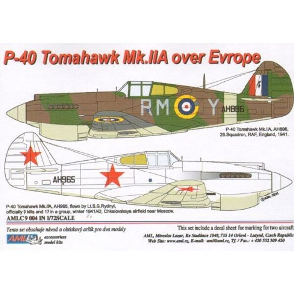 Curtiss P-40B Tomahawk Mk.IIA over Europe x 2