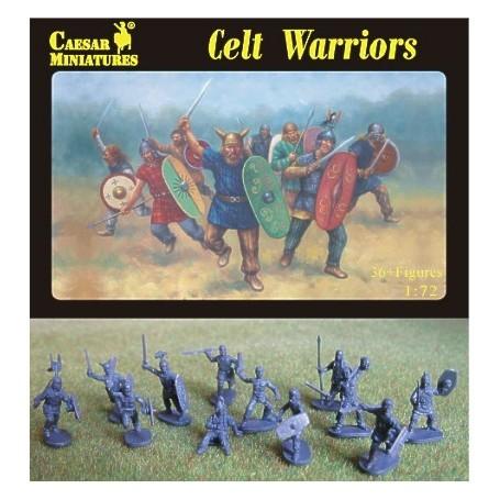 Celt Warriors