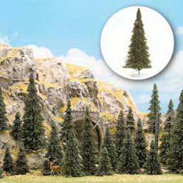 30 great firs