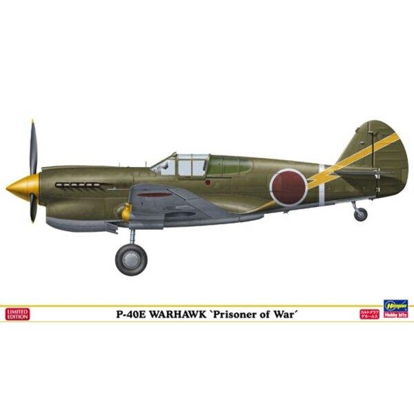 P-40E PRISONER OF WAR